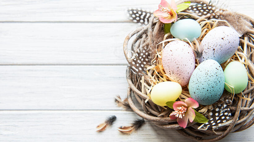 Easter,Background,With,Colorful,Eggs,In,Nest,On,A,White